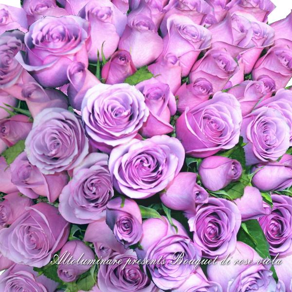 【アメジスト】パープルのバラ100本のブーケ(紫のバラの花束)【楽ギフ_メッセ入力】【楽ギフ_名入れ】【お誕生日祝い 入学祝い 出産内祝い 快気祝い 出産祝い 送料込】【YDKG】【SMTB】