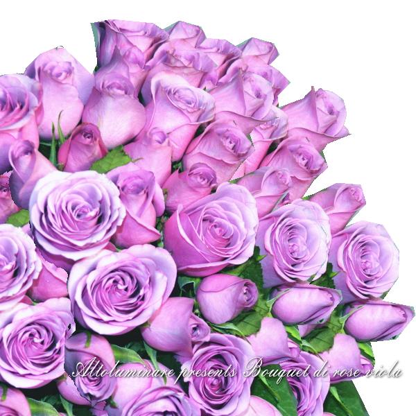 【アメジスト】パープルのバラ50本のブーケ(紫のバラの花束)【楽ギフ_メッセ入力】【楽ギフ_名入れ】【お誕生日祝い 入学祝い 出産内祝い 快気祝い 出産祝い 送料込】【YDKG】【SMTB】