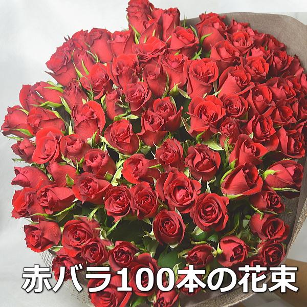 赤バラ 100本 花束 プロポーズ 108本変更可 フラワーギフト 花ギフト バラ 赤薔薇 赤バラ バラの花束 薔薇の花束 ローズ お花 レッド 花束 ブーケ お誕生日 プレゼント 贈り物 記念日 結婚記念日 サプライズ 祝い花 お祝い 御祝い おしゃれ