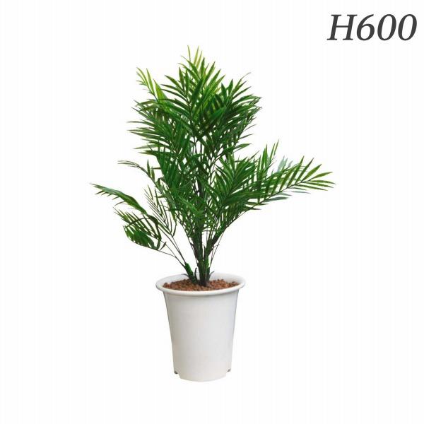 人気を誇る ライオン事務器 人工植物 AS-PAP 人工植物 パーラーパーム 約H600mm 約H600mm AS-PAP 576-22【代引不可】, ヨネヤマチョウ:b279bf5d --- supercanaltv.zonalivresh.dominiotemporario.com