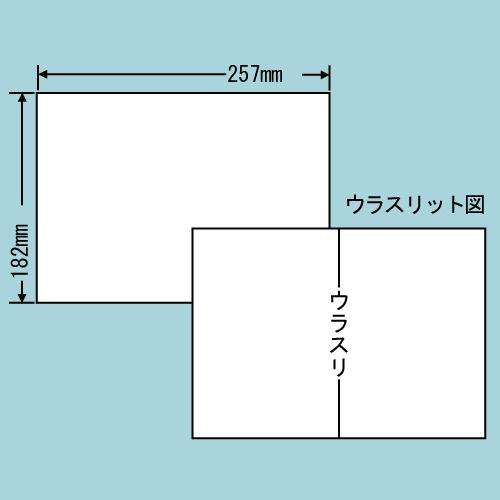 ラベルシール 東洋印刷 C1B5F 再剥離タイプ B5 100シート×10箱【代引不可】
