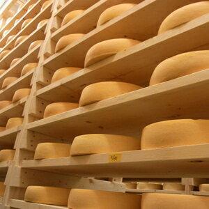 【使いやすい冷凍クラッシュタイプ!】【冷凍】北海道十勝産 ラクレットチーズクラッシュ 1kg (ウォッシュ/セミハード/お取り寄せ/業務用)
