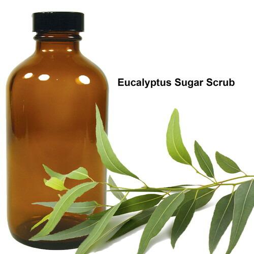 業務用 お得サイズ ユーカリプタス シュガースクラブ Eucalyptus Sugar Scrub 16oz / 473ml