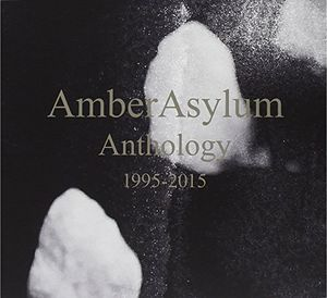【輸入盤CD】【送料無料】Amber Asylum / Anthology (12PC)