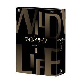 【送料無料】 ワイルドライフ DVD-BOXII(DVD)[3枚組]