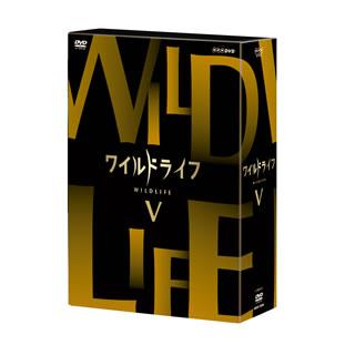【送料無料】 ワイルドライフ DVD-BOXV[DVD][3枚組]