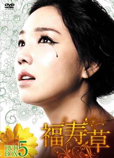 【送料無料】福寿草 DVD-BOX5[DVD][6枚組] DVD-BOX5[DVD][6枚組], ヨシノチョウ:5b02ab60 --- data.gd.no