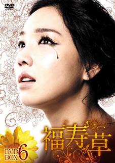 【送料無料】福寿草 DVD-BOX6[DVD][6枚組], 加佐郡:09c3baae --- data.gd.no
