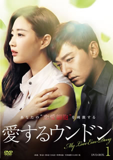 【送料無料】愛するウンドン DVD-BOX1[DVD][4枚組]【D2016/7/6発売】