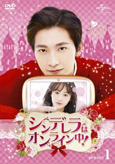 【送料無料】シンデレラはオンライン中! DVD-SET1[DVD][5枚組]【D2017/7/4発売】