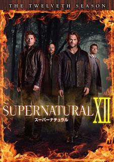 【送料無料】SUPERNATURAL XII スーパーナチュラル トゥエルブ・シーズン コンプリート・ボックス[DVD][12枚組]【D2017/9/13発売】