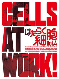 【国内盤DVD】【送料無料】はたらく細胞 4[2枚組][初回出荷限定]【D2018/11/28発売】