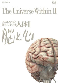 【送料無料】NHKスペシャル 驚異の小宇宙 人体II 脳と心 DVD BOX[DVD][6枚組]【D2018/9/28発売】