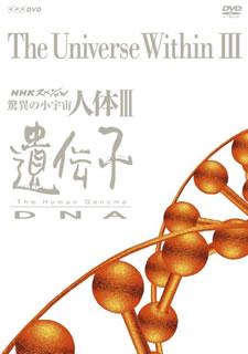 【送料無料】NHKスペシャル 驚異の小宇宙 人体III 遺伝子 DVD BOX[DVD][6枚組]【D2018/9/28発売】