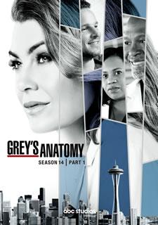 【送料無料】グレイズ・アナトミー シーズン14 コレクターズ BOX Part1[DVD][6枚組]【D2019/4/3発売】