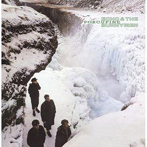 【送料無料】Echo & Bunnymen / Porcupine (UK盤)【輸入盤LPレコード】(エコー&バニーメン)