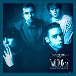 【送料無料】Waltones / Very Best Of (オランダ盤)【輸入盤LPレコード】