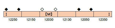 【税込?送料無料】 30822 近鉄12200系スナックカー(6両固定編成・未更新車) 6両編成セット(動力付き)[グリーンマックス]【送料無料】《03月予約》, ファンタスフィットOnlineShop 28389cd6