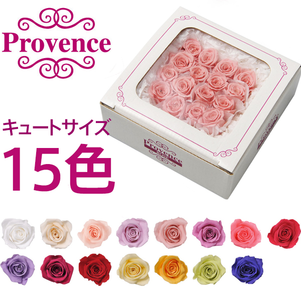 オンラインショップ プリザーブドフラワー 花材 花時計 花 造花 有名な プレゼント プロヴァンスローズ 母の日 フラワーアレンジメント バラ薔薇 ギフト キュート16輪