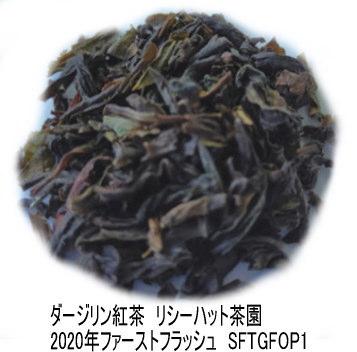 【50g】リシーハット茶園2020年ファーストフラッシュ(SFTGFOP1リーフ)ダージリン紅茶  紅茶 茶葉