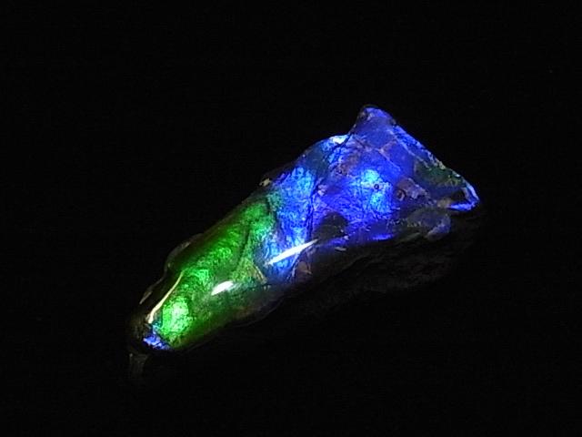 激安特価品 新色 約7000万年前の神秘が宿るカナダ産化石宝石 アンモライト 加工用アンモライト破片 アンモナイト実物稀少化石