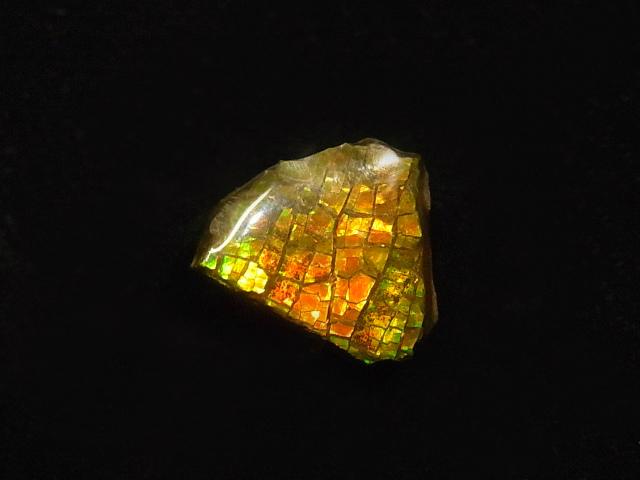 約7000万年前の神秘が宿るカナダ産化石宝石 アンモライト アンモナイト実物稀少化石 ふるさと割 倉 加工用アンモライト破片