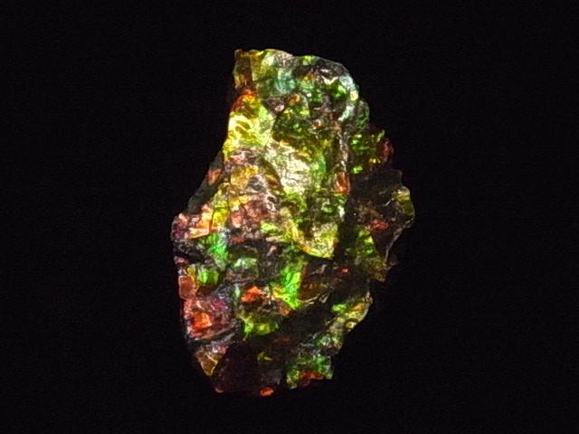 売買 約7000万年前の神秘が宿る化石宝石の原石片 稀少カナダ産アンモナイト実物レア化石 価格 アンモライト破片 欠片 かけら