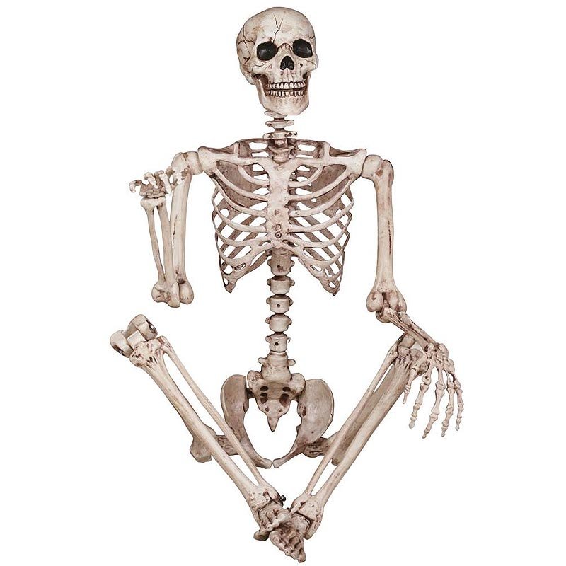コストコ Costco スカル 骸骨 ドクロ オブジェ 身長150cm LED眼球 関節60箇所 人体模型 | ハロウィン イベント【ITEM/1900264】