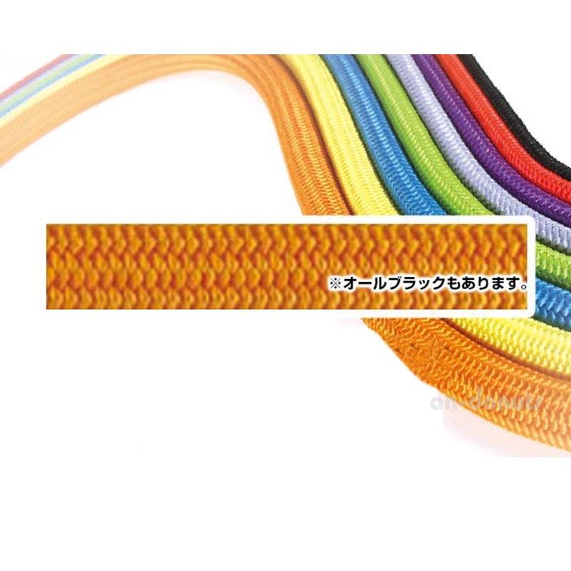 エーデルワイス EDELWEISS パワーロープ オレンジ・ブラック 9mm×60m 【EW0308】