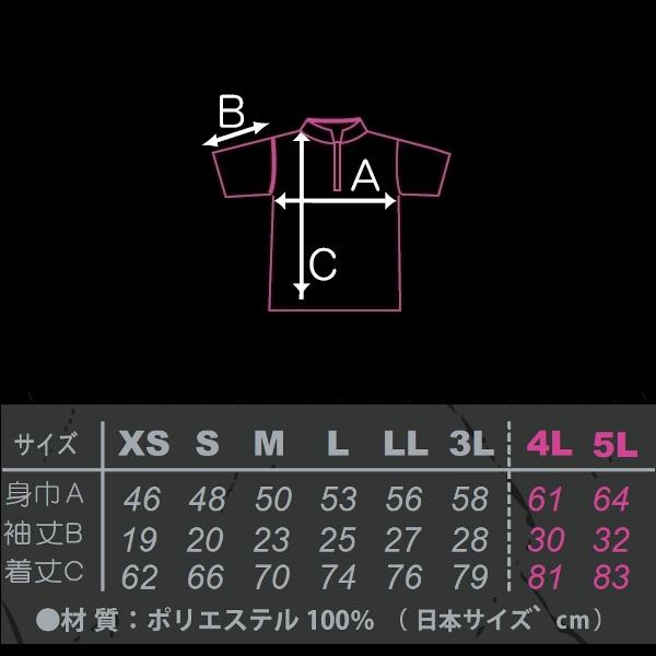 (代引き除く) 【STORM】 HS-01007 トランプフォーマー・ピンクネコポス可 ST&HEXA