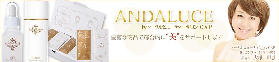 アンダルーチェ:実際当社のサロンで使用している商材をご案内致します。
