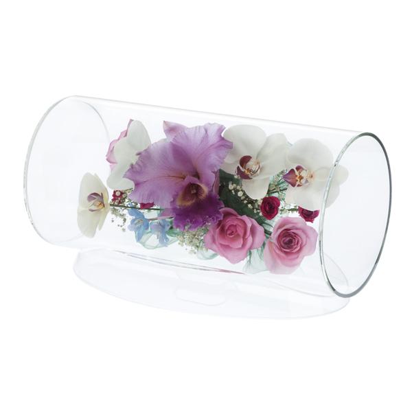 【日本産】 本物の花で、想いを伝える。レンデフロール カトレア TB-N・胡蝶蘭・バラ TB-N, 興部町:85d9a0da --- supercanaltv.zonalivresh.dominiotemporario.com