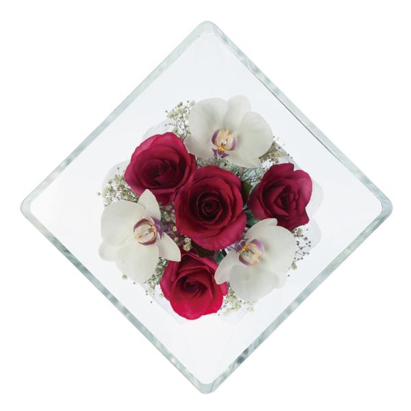 新品同様 本物の花で、想いを伝える。レンデフロール バラ・胡蝶蘭・かすみ草 X-BB X-BB, ワールドギャラリー:642fd5df --- supercanaltv.zonalivresh.dominiotemporario.com