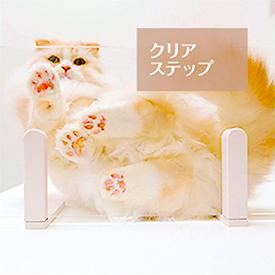 キャットタワー クリアステップ 日本製 猫タワー タワー キャットウォーク キャットステップ 猫 ねこ 多頭飼い 省スペース おしゃれ スリム 単品 DIY 壁 棚 クリア