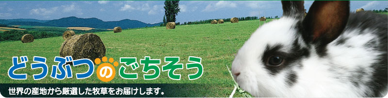 どうぶつのごちそう:うさぎをはじめとした小動物の牧草を良質で安くご提供しています。