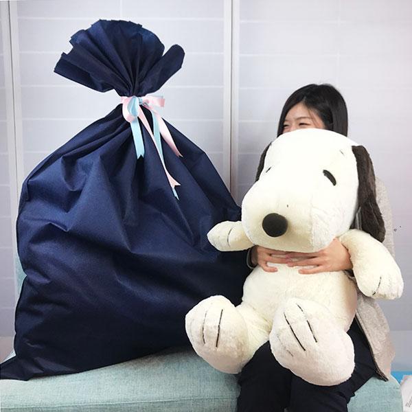 福袋 スヌーピー ぬいぐるみ ブラインドパッケージ 特大ぬいぐるみ ラッピング 約20000円相当 送料込み