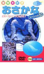 趣味 定価の67%OFF 実用 バーゲンセール 初売り 中古 動物大好き DVD おさかなスペシャル50