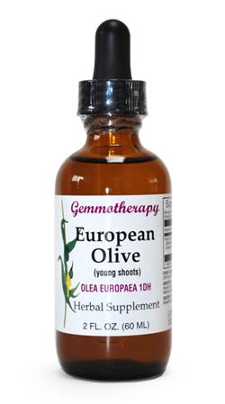 NEW 海外並行輸入正規品 ARRIVAL ジェモセラピー 体内環境を整える 植物の新芽エネルギー 60ml 血液循環用 ヨーロピアンオリーブ