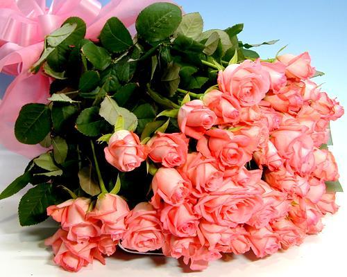 バラの花束 お買い得ピンクバラ50本の花束 【送料無料】 お誕生日 プレゼント ギフト 結婚祝い 記念日 退職祝い いい夫婦の日 クリスマス お歳暮 お正月 ホワイトデー 卒業 お祝い