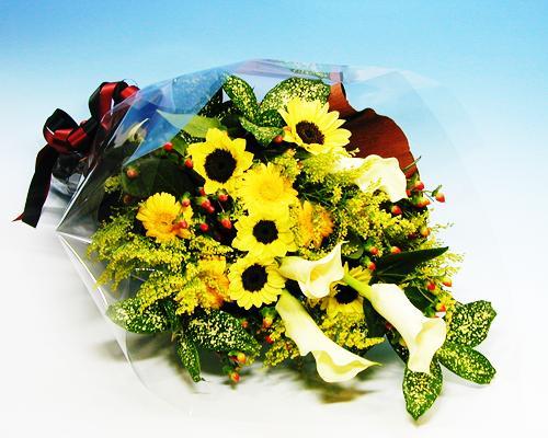 お中元 サマーギフト カラーとヒマワリの花束 予約販売 並行輸入品