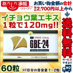 【送料無料の3個セット】なんと!あのGBE-24フォルテ 60粒が当店なら「この価格!?」イチョウ葉エキスが1粒あたり120mg!※お取り寄せ商品