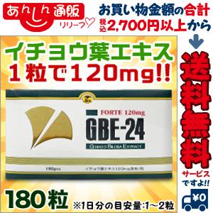 【送料無料の2個セット】なんと!あの【アサヒグループ食品】GBE-24 フォルテ 180粒 が「この価格!?」※お取り寄せ商品