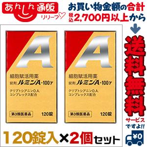 【第3類医薬品】【送料無料の2個セット】【日水製薬】ルミンA100γ 120錠