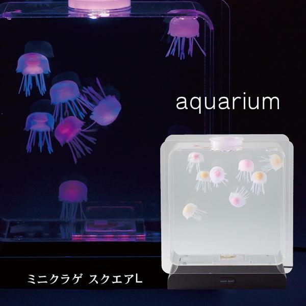 LEDライトで光りながらふわふわ揺れる 水族館で見るような幻想的なクラゲの動きに癒されます アクアリウム AQUARIUM ミニクラゲ スクエアL 大人気 新作 18159 シリコン インテリア 水槽 癒し ジェリーフィッシュ 人工 イシグロ