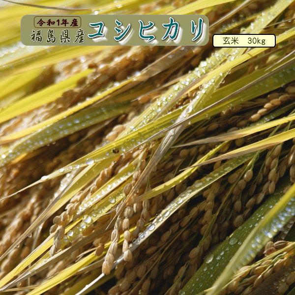 30kg コシヒカリ 玄米 お米 元年産 福島県産 送料無料 一等 『令和1年福島県産コシヒカリ玄米30kg』