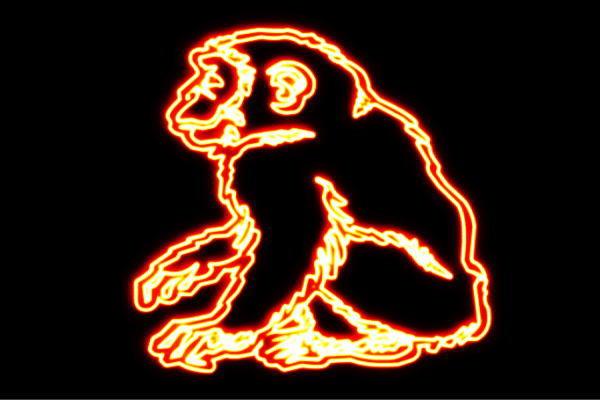 【ネオン】さる【猿】【サル】【オラウータン】【ゴリラ】【アニマル】【動物】【ネオンライト】【電飾】【LED】【ライト】【サイン】【neon】【看板】【イルミネーション】【インテリア】【店舗】【ネオンサイン】【アメリカン雑貨】【かわいい】【おしゃれ】