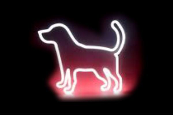 【ネオン】ドッグシルエット【犬】【いぬ】【イヌ】【動物】【アニマル】【ペット】【ネオンライト】【電飾】【LED】【ライト】【サイン】【neon】【看板】【イルミネーション】【インテリア】【店舗】【ネオンサイン】【アメリカン雑貨】【おしゃれ】【かわいい】