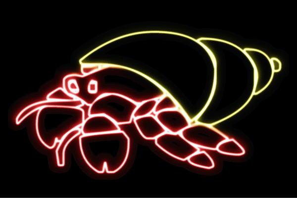 【ネオン】ヤドカリ【やどかり】【かい】【カイ】【シェル】【貝殻】【動物】【アニマル】【夏】【サマー】【ネオンライト】【電飾】【LED】【ライト】【サイン】【neon】【看板】【イルミネーション】【インテリア】【店舗】【ネオンサイン】【アメリカン雑貨】