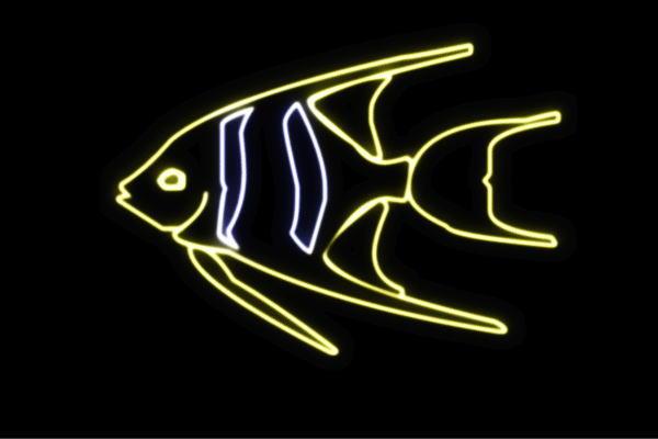 【ネオン】お魚【27】【魚】【フィッシュ】【さかな】【サカナ】【FISH】【海】【うみ】【ネオンライト】【電飾】【LED】【ライト】【サイン】【neon】【看板】【イルミネーション】【インテリア】【店舗】【ネオンサイン】【アメリカン雑貨】【かわいい】【おしゃれ】