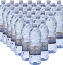 초 ・ 바다 깊은 물 MaHaLo (매년) 1.5 L × 12 × 2 박스 (물/미네랄 워터/아오이 당 약국/통 판/낙천) 10P22Nov13